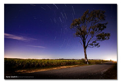 Cloud Dancer ([ Kane ]) Tags: road tree night clouds stars australia astro stack qld queensland kane sugarcane startrail gledhill 50d kanegledhill kanegledhillphotography