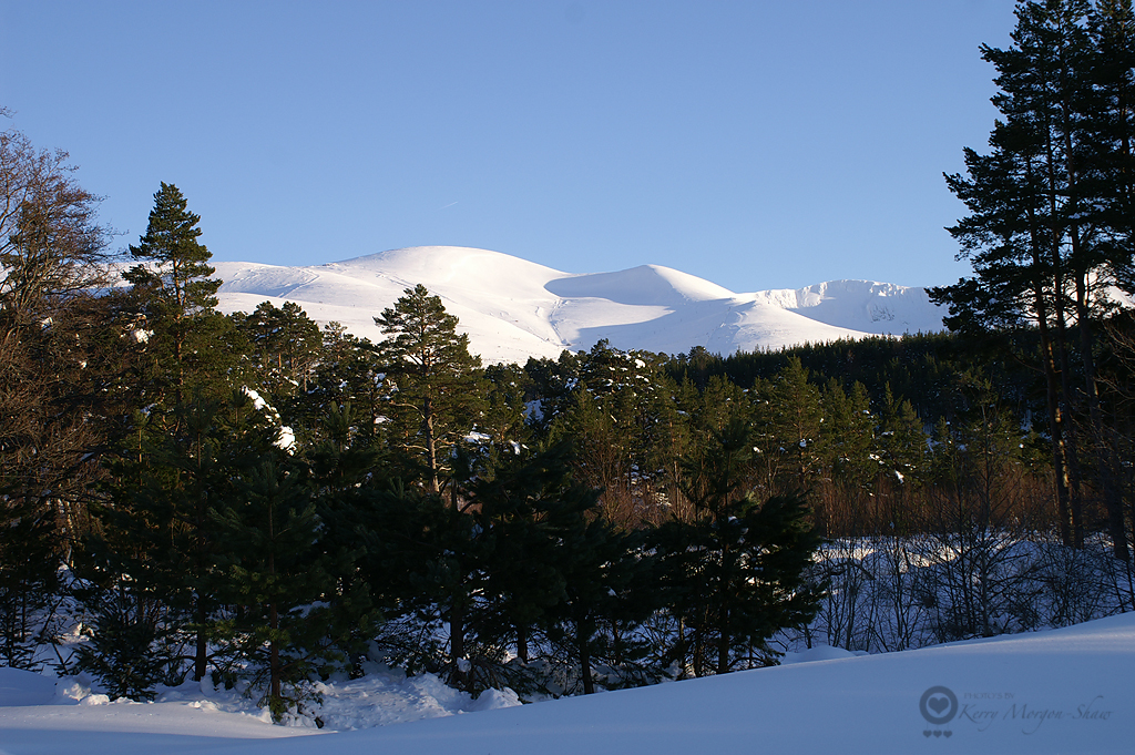 Cairngorm Moutain