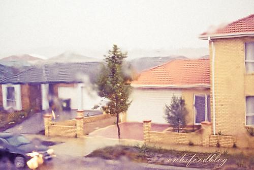 Melbourne storm #2010