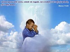 Marcu 11-24 (Palosi Marton) Tags: kids childrens copii crestine versete biblice