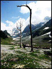 sonmarg (Swatantra_yoddha) Tags: wallpaper england india nature landscape scotland scenery