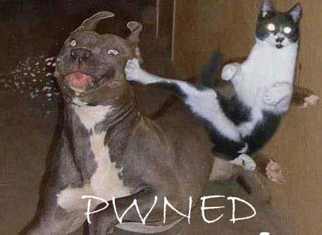 pwned-funny2