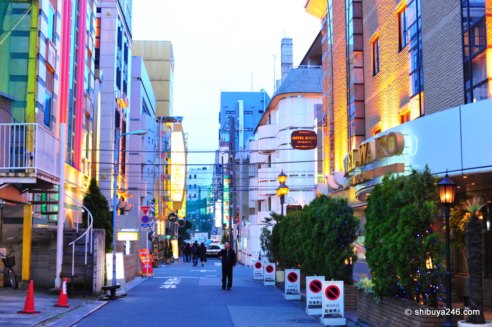 There are lots of love hotels at the back end of kabukicho as well. Many are looking a bit old, but there are some new ones around also.