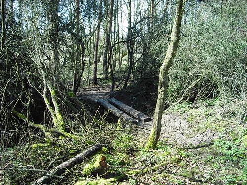 Wooden bridge at Croft Trail, Swindon.