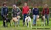 Greyhounds: Maggie Nachwuchs