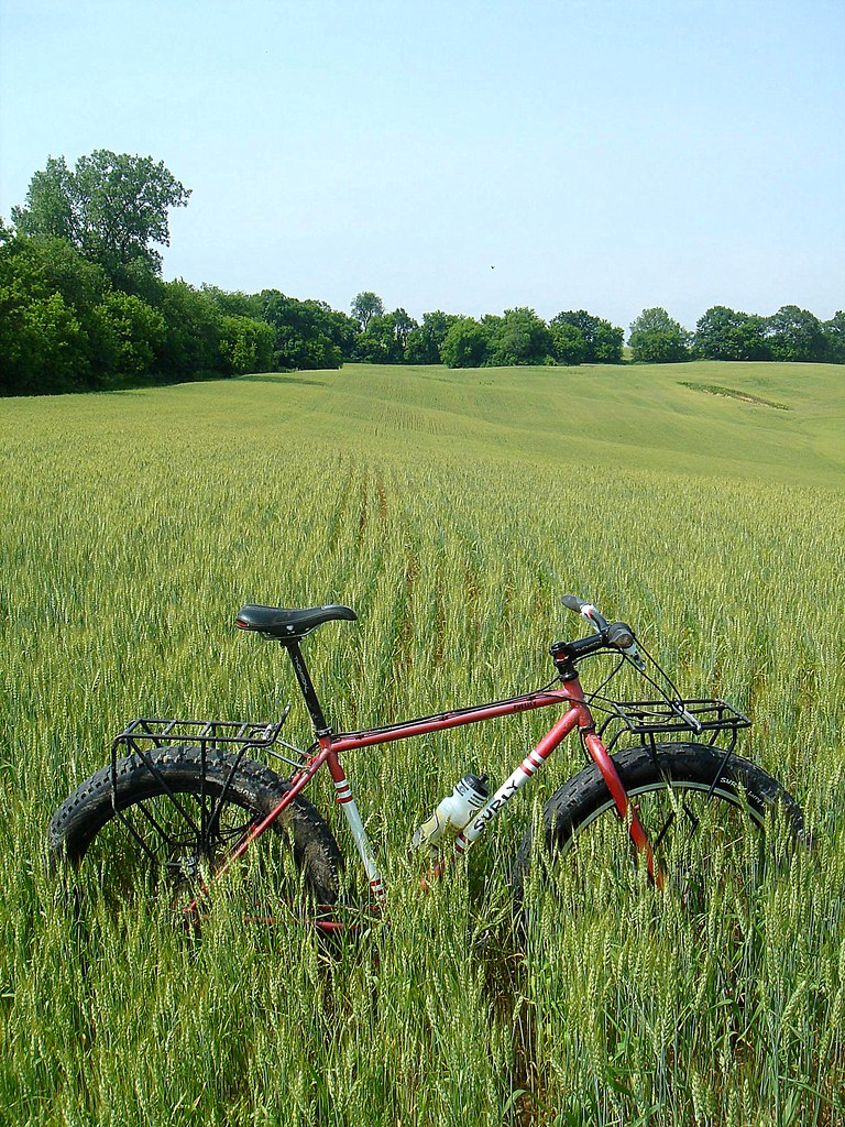 fat bike ~ wheat field