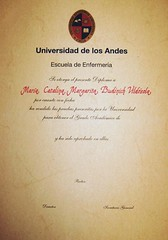 Diploma 02 (Francisca Sags) Tags: arte letras caligrafa manuscrito diplomas reconocimientos escrituraamano