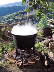 Boiling Cauldron (Michelle Fabio) Tags: cauldron calabria boilingwater badolato yourcountry
