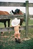 Stetson (Micro_Moments) Tags: horses baby cowboy country cowboyhat cowboyboots littlecowboy