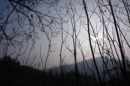 Pomeriggio d'inverno by gabriela.riva