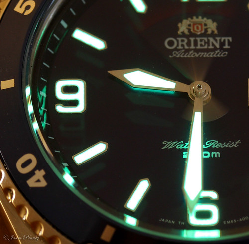Orient Divers Watch AKA The Blue Mako