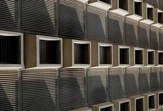Shadow Boxes 2 (photographerp) Tags: windows building college architecture campus shadows dorm perspective boxes dormitory universityofmiami miamihurricanes stanfordhall nikon50mmf18d nikond80 robertgundy