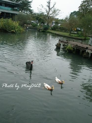 2009 12 20_47八甲魚場.jpg
