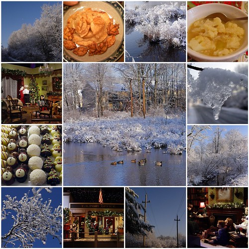 Snapshot:  December 2009