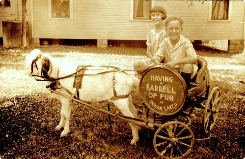 Bob & Peach in goat cart