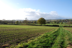 DSC_0314 (Edward and Caroline) Tags: autumn walk norton chipping