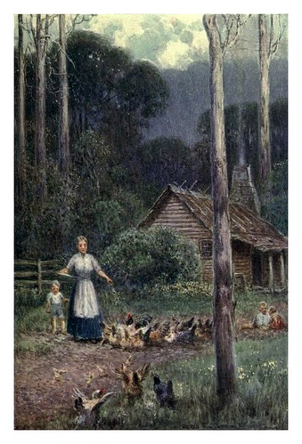 030-Una choza de madera-Australia (1910)-Percy F. Spence