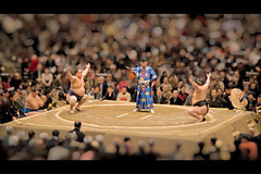 toy-Sumo (AHXA Peter Pan Welcome to my photostream) Tags: people sport japan photoshop toy little shift peterpan peter sumo pan tilt effect wrestlers ahxaa ahxaa81