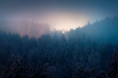 Layers (Latyrx) Tags: city longexposure blue trees light shadow mist snow nature yellow misty fog mystery night photoshop suomi finland landscape photography lights photo nikon streetlight long exposure frost graphic stock perspective atmosphere covered mysterious labels mystical layers finnish enter nikkor sell 70300mm magical chambers vr mikko 2010 resize latyrx d90 nikond90 mikkolagerstedt