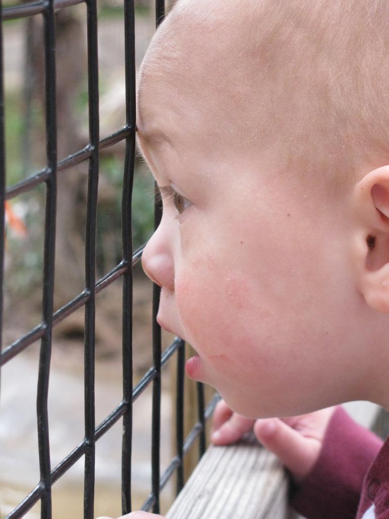 ben at zoo