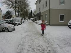 January302010 002 (vanester.rm) Tags: germany frozenlake ploen january302010