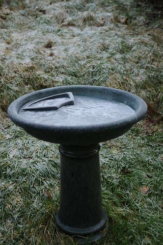 ice birdbath frost