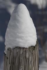snowcone (Floater Ya-Ya (Jean McKenna)) Tags: winter nature pa snowcone buckscounty wintery pvnc