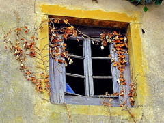 Forgotten window... (mujepa) Tags: old house broken window ivy past fentre lierre pass masure
