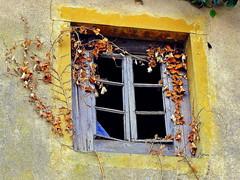 Forgotten window... (mujepa) Tags: old house broken window ivy past fentre lierre pass masure