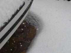 Riviera Snowpocalypse 2010