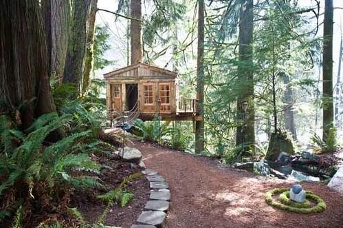 treehousepoint4