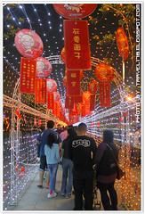 2010中台灣元宵燈會_0500