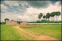 Temple. (Prabhu B Doss) Tags: trees rural temple nikon village sigma palm tirunelveli 1020 hdr tamilnadu d80 prabhub prabhubdoss melseval zerommphotography 0mmphotography