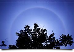 Matahari Turut Bersujud* (AnNamir c[_]) Tags: sun canon kitlens halo malaysia 1001nights sundog cahaya phenomenon 18mm matahari 500d sunhalo annamir getokubicom 1001nightsmagiccity