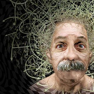 Einstein por Kanijoman.