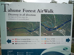 Tahune Forest Air Walk Photo