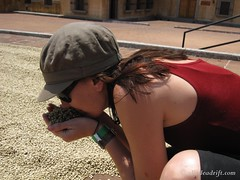 Coffee Plantation Tour (26)