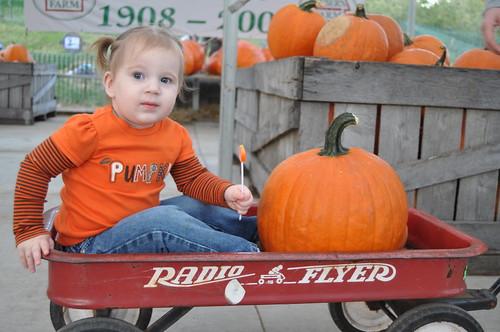 Wagon & Pumpkin