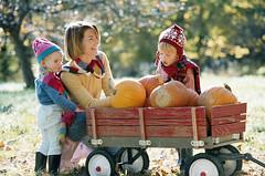 Fall - Family A