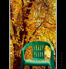 Tranquility (seyed mostafa zamani) Tags: life autumn cold color tree nature yellow leaf chair colorful iran tranquility iranian chapter              marand