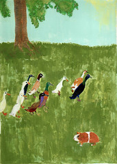 Guinea pig and ten ducks (Yoshiko Oouchi) Tags: pictures bird art animal animals illustration painting happy duck flickr lovely 2009