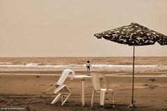 ... (Moein Mn) Tags: texture beach girl sepia play iran sunshade caspian mazandaran khazar moein     caspiansea       mazandaransea moeinmohammadnejad