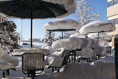 Blanketed (Keppyslinger) Tags: trees winter snow madison tables cuna