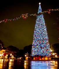 disneyland christmas tree (deb1edeb) Tags: california holiday reflection rain night canon unitedstates disneyland group christmastree orangecounty anaheim 2009 themepark mainstreetusa disneylandresort grouppool powershots90