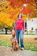 0910 OSU campus in fall (DaveMosher) Tags: fall leaves osu