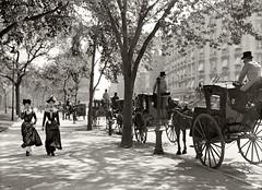 Madison Sq 1900
