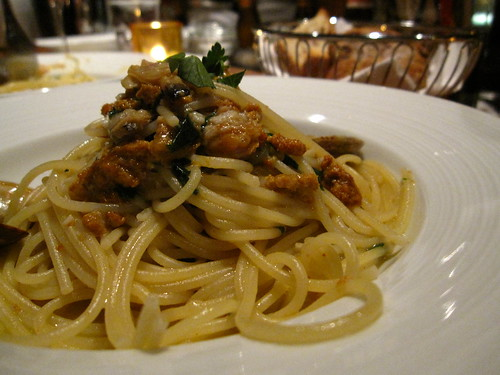 sea urchin and clam spahgetti