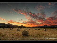 Sunset Colours over Hay Field (danishpm) Tags: sunset mountains field clouds canon australia wideangle nsw aussie aus 1020mm hdr manfrotto haybales mountwarning murwillumbah sigmalens northernnsw eos450d 450d tweedshire sorenmartensen
