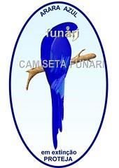 desenho foto arara azul extinção meio ambiente pantanal