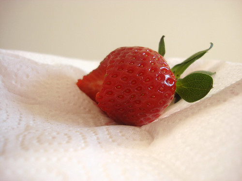die erste Erdbeere 2010